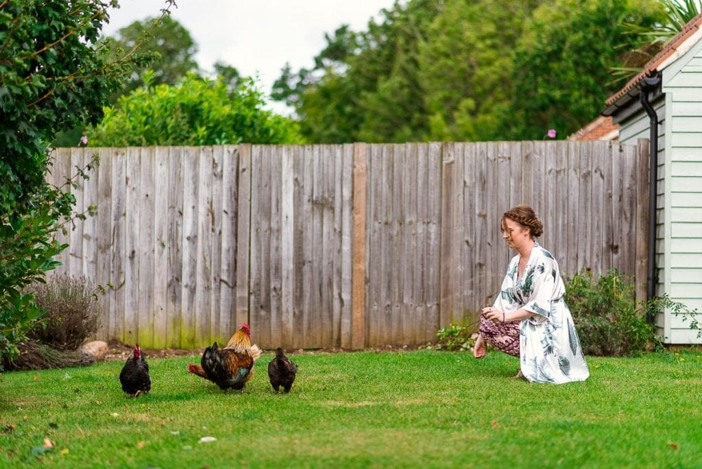 Bridesmaid feeds chickens at Manor Mews