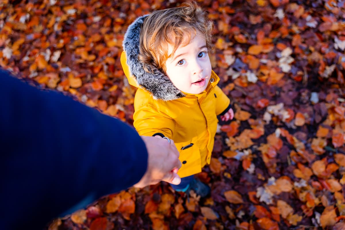 Autumnal woodland family lifestyle photography by Norwich photographer